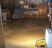 Flooded Basements & Flood Mitigation, Schaumburg, IL